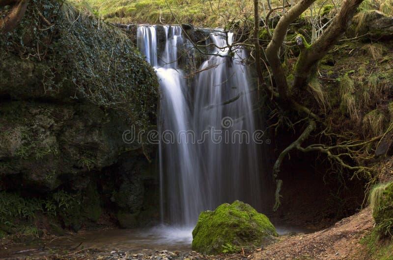 小瀑布通过树根源凝灰岩水坝, Lathkill戴尔 免版税库存图片