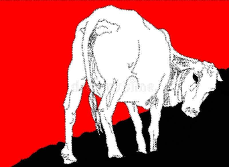 小牛图象 库存例证