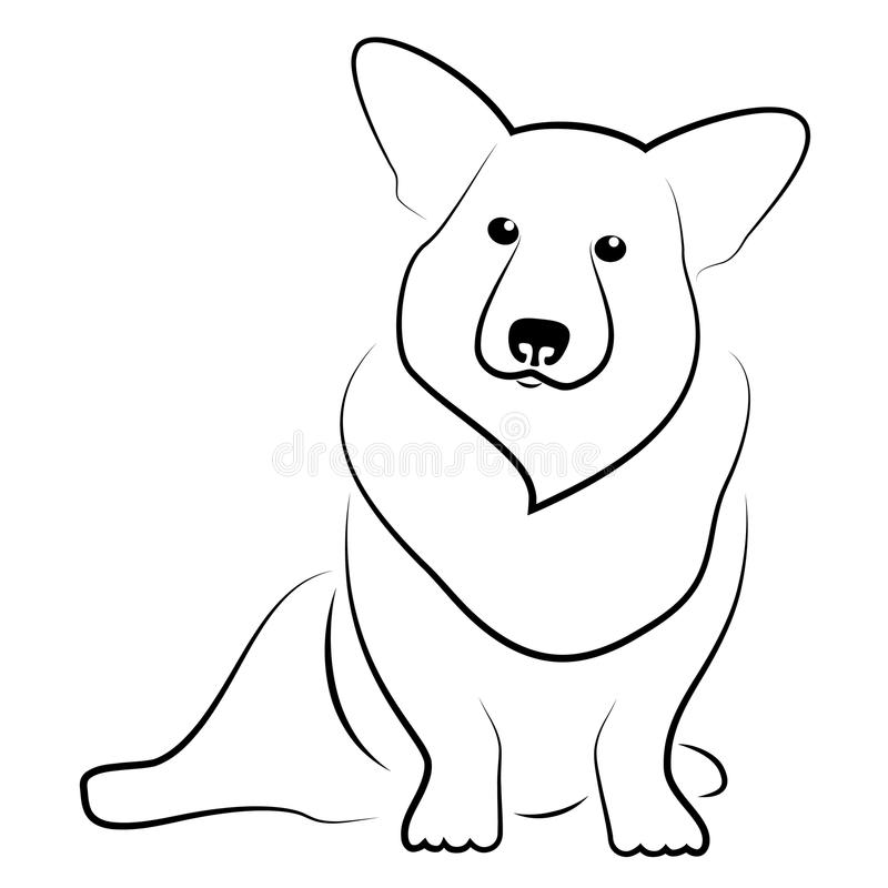 小狗威尔士 向量例证