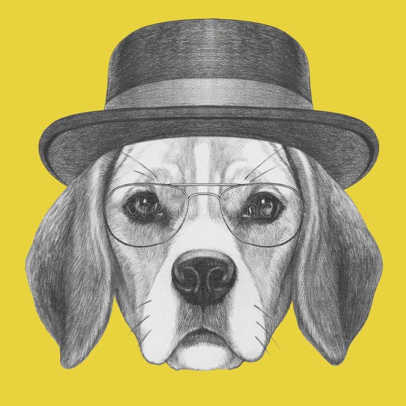 小猎犬狗画象与帽子和玻璃的 库存例证