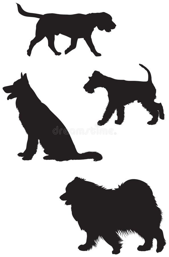 小猎犬,德国牧羊犬,狐狸狗 萨莫耶特人剪影 皇族释放例证