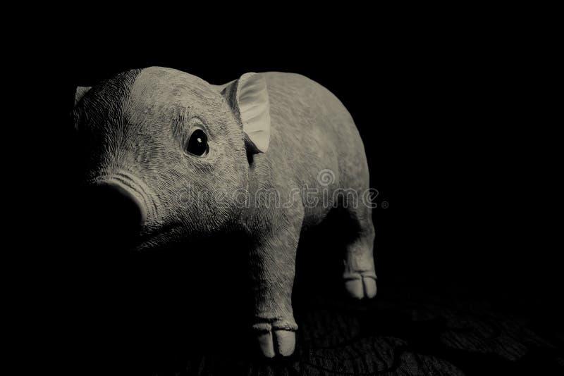 小猪玩具 库存照片