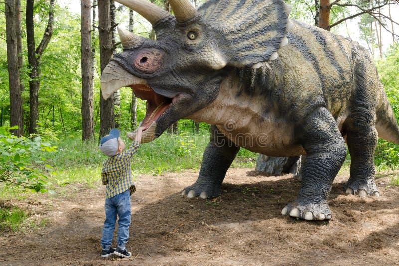 小男孩与恐龙模型三角恐龙互动 图库摄影