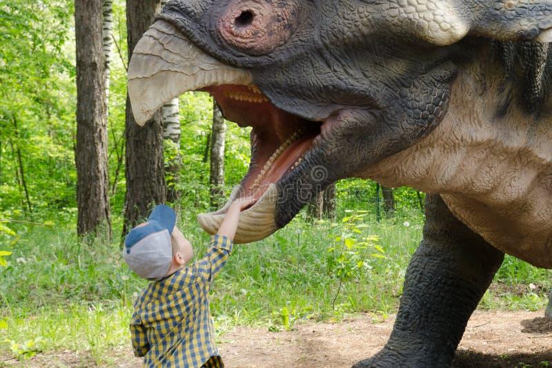 小男孩与恐龙模型三角恐龙互动 免版税图库摄影