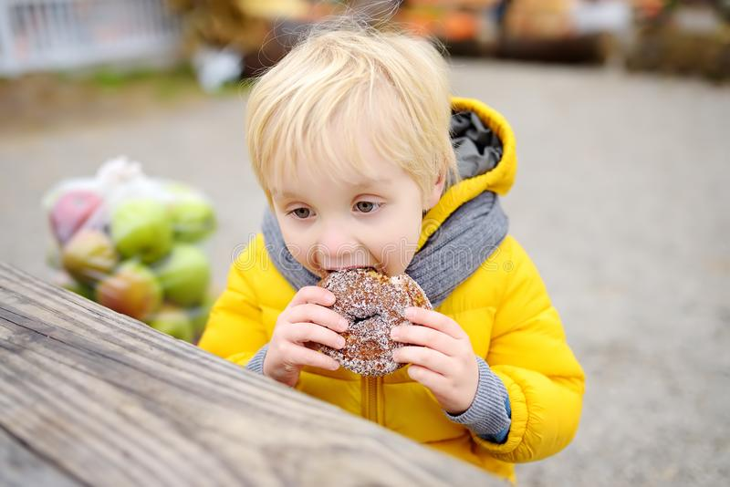 小男孩吃午餐在购物在传统农夫农业市场上以后秋天 吃油炸圈饼的孩子 在长凳的孩子附近 库存照片
