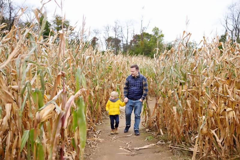 小男孩和他的父亲获得在南瓜市场的乐趣秋天 走在玉米迷宫的干玉米茎中的家庭 免版税库存图片