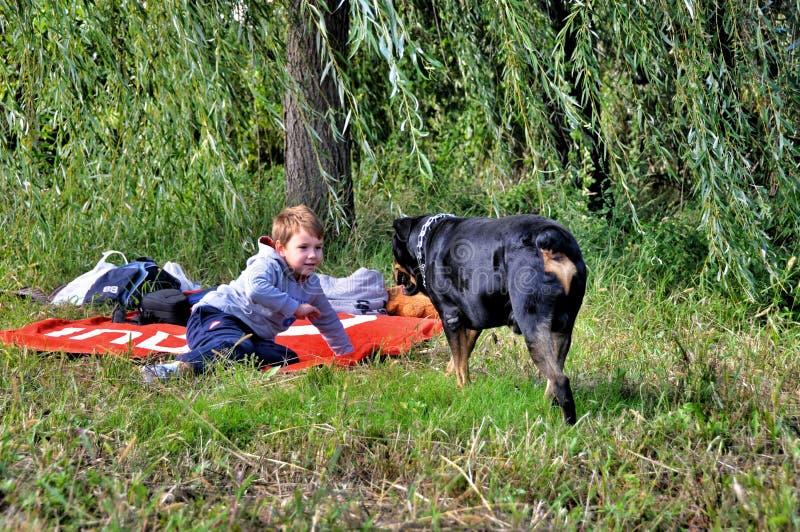 小男孩和大狗 免版税库存照片
