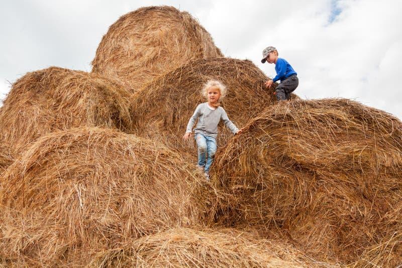 小男孩和女孩麦田的 免版税图库摄影