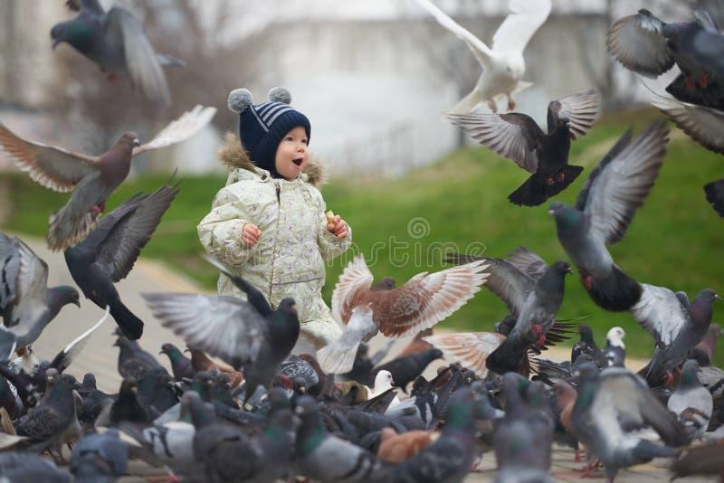 小男孩哺养的鸽子的街道画象用面包