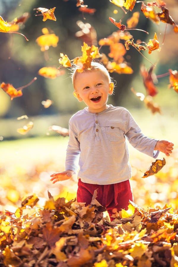 小男孩在使用与叶子的秋天公园 库存照片