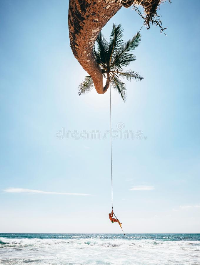 小男孩在热带棕榈树摇摆,斯里兰卡海滩摇晃 库存照片