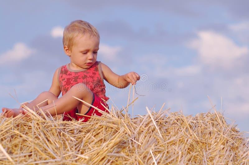 小男孩画象夏天帽子的坐一块麦田的一个干草堆 免版税库存图片