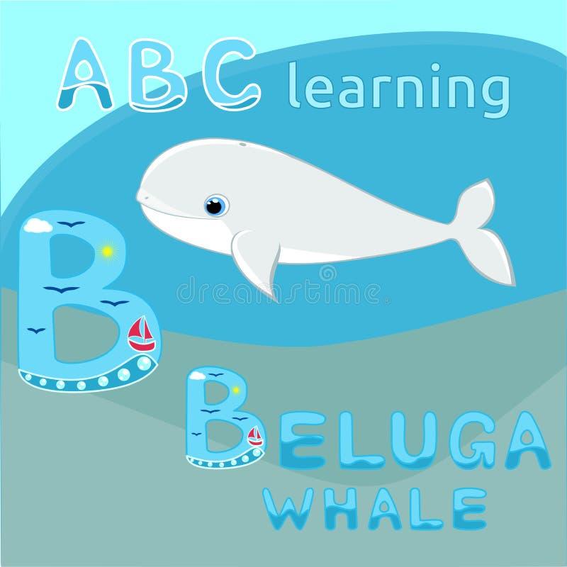 小白海豚鲸鱼传染媒介例证逗人喜爱的动画片白鲸传染媒介海哺乳动物的传染媒介海洋动物动画片字母表B信件ABC k 向量例证