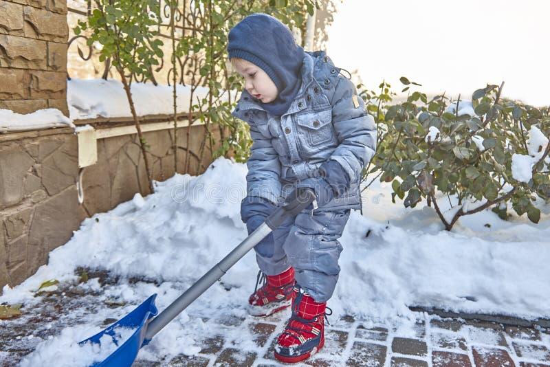 小白种人男孩在有美丽的多雪的玫瑰丛的围场铲起雪 有户外铁锹戏剧的孩子在冬天 Childr 免版税库存图片