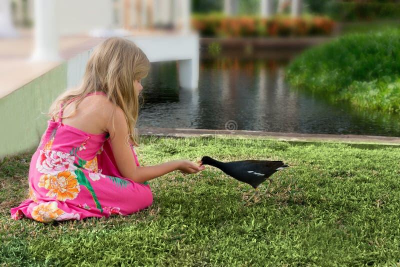 小白肤金发的白种人女孩在一个热带庭院里喂养一只鸟 免版税库存图片