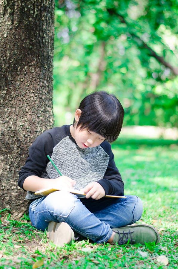小的亚洲逗人喜爱的男孩文字书在公园 免版税库存照片