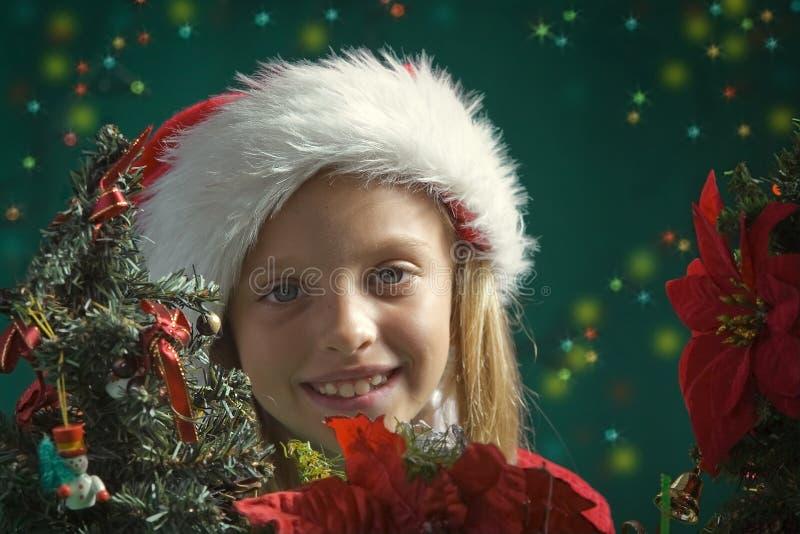 小的圣诞老人 库存图片