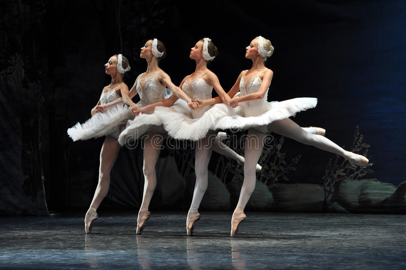 小的天鹅, Swan湖芭蕾。 免版税图库摄影