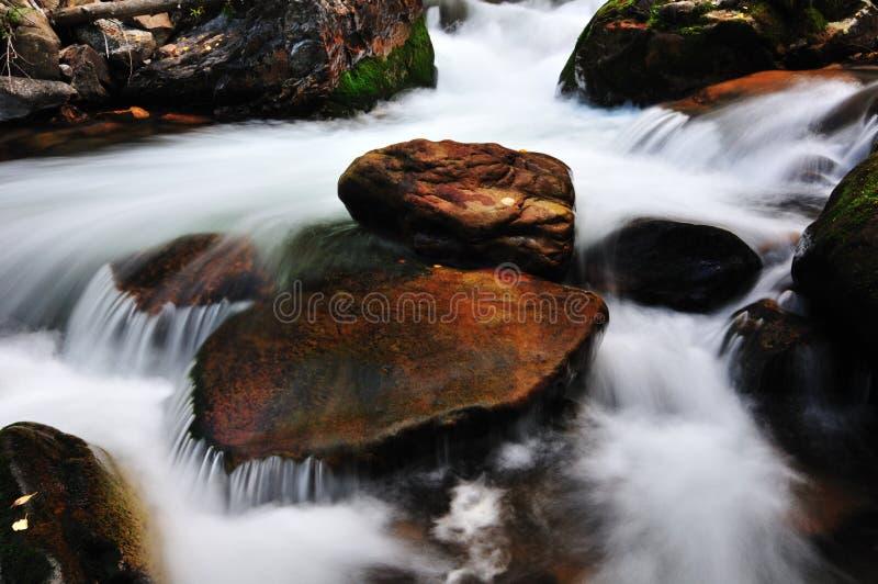 小的小河 库存图片