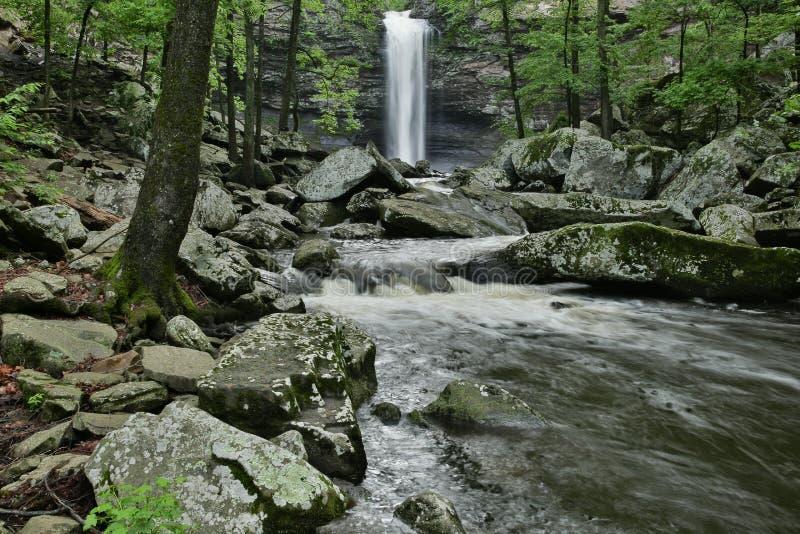小的斜纹布国家公园Cedar Falls锡达克里克 免版税库存照片