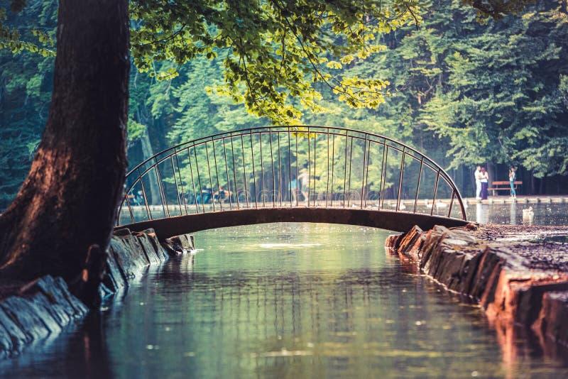 小的桥梁的图象在湖的在日落期间 库存图片