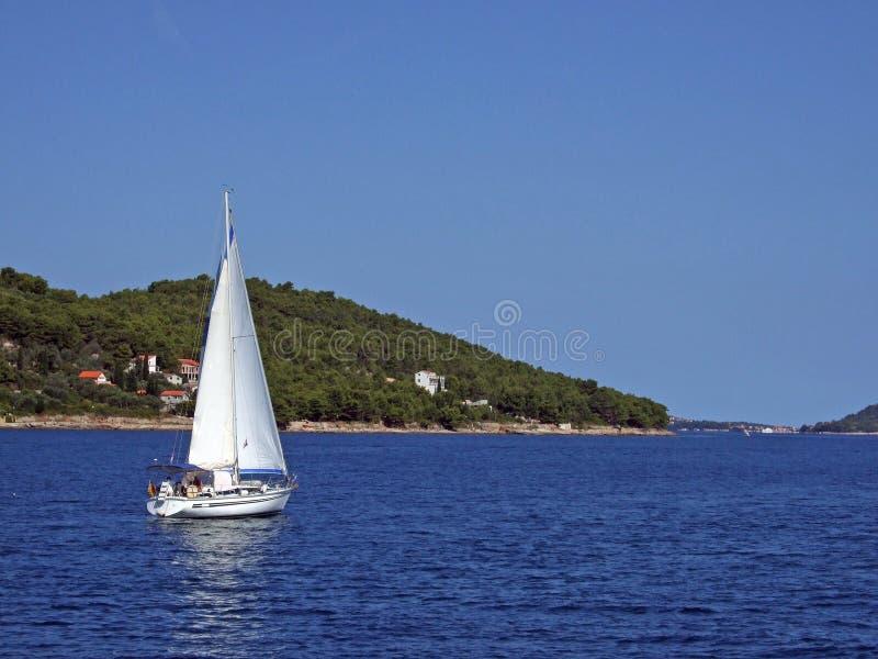 小的游艇 免版税图库摄影