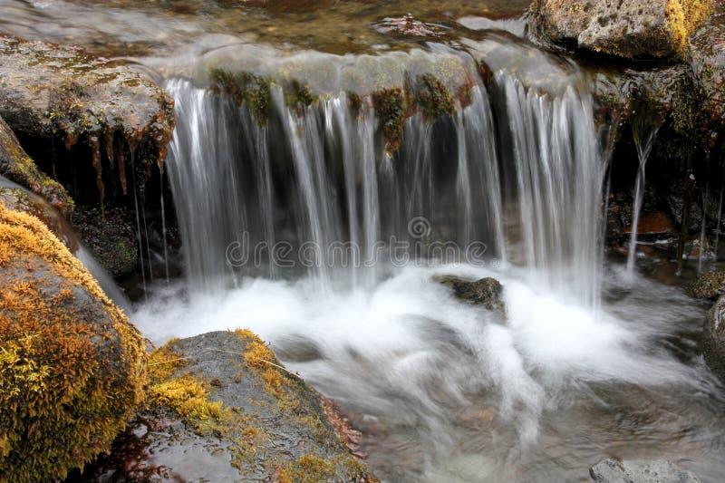小的溪 免版税库存照片
