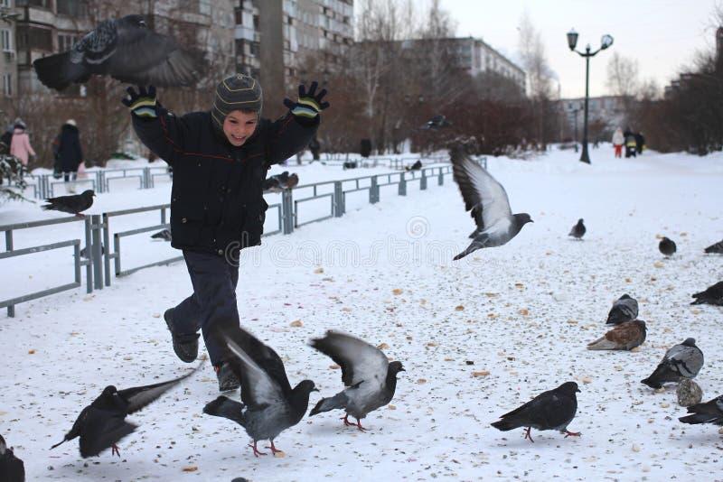 小的男婴乘驾在鸟鸽子公园在冬天笑乐趣情感的 库存照片