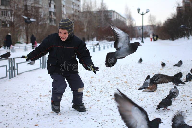 小的男婴乘驾在鸟鸽子公园在冬天笑乐趣情感的 免版税库存照片