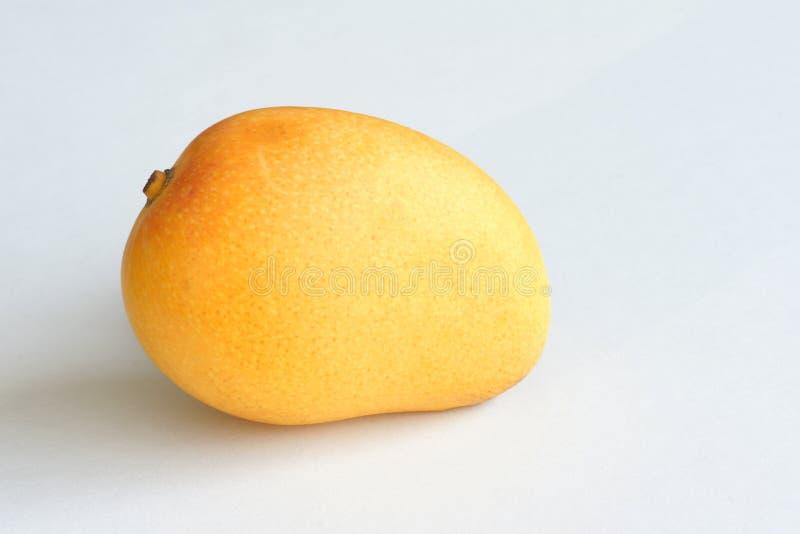 小的芒果 免版税库存图片