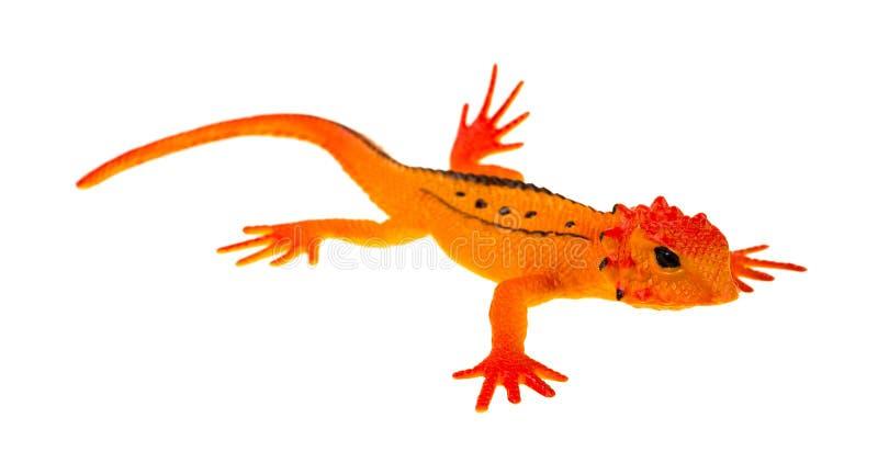 小的黑眼睛的橙色玩具蜥蜴 库存照片