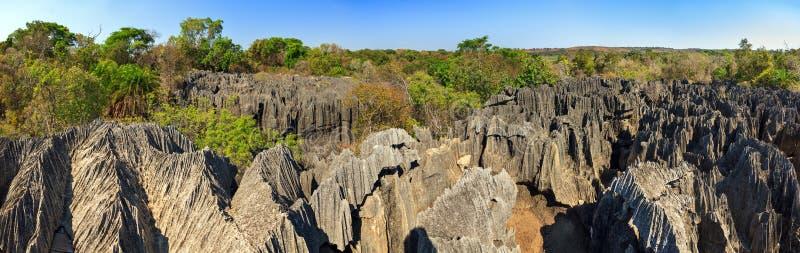 小的Tsingy全景 免版税图库摄影