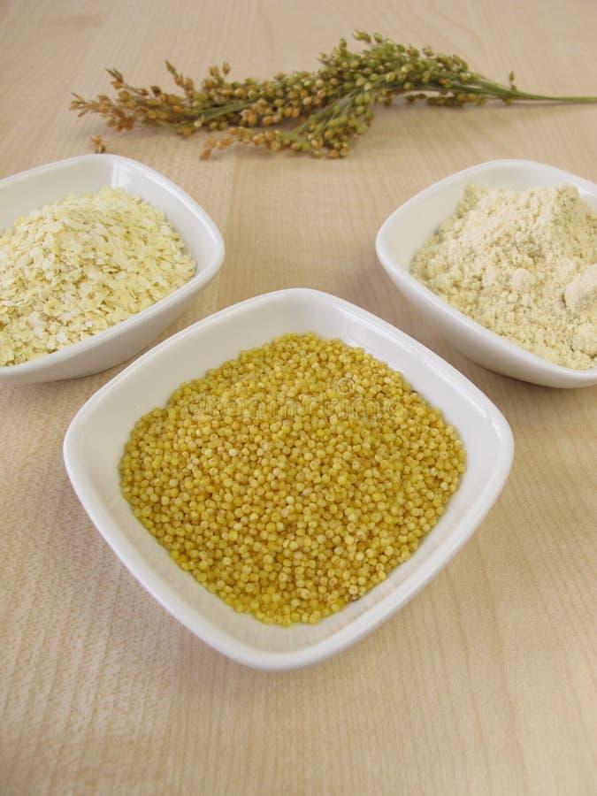 小米面粉、小米五谷和滚动的小米 图库摄影