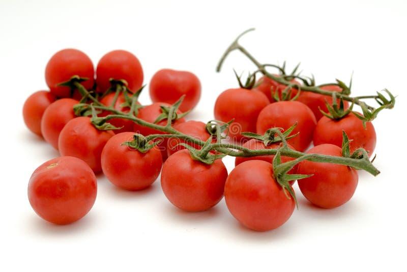 小红色鲜美蕃茄 免版税库存图片