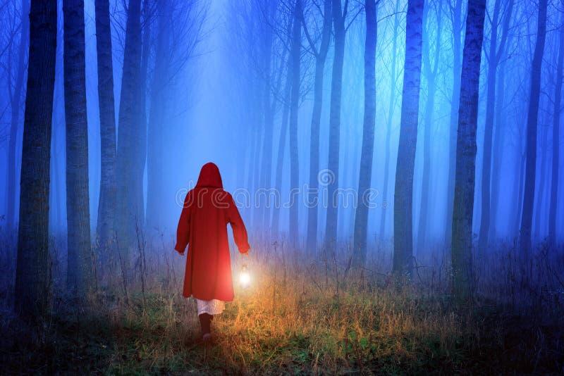 小红骑兜帽在森林里 库存图片