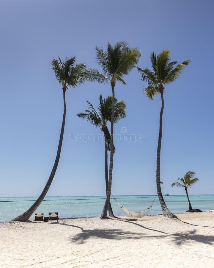 小组与吊床和轻便马车躺椅的棕榈树在海滩在加勒比 免版税库存照片