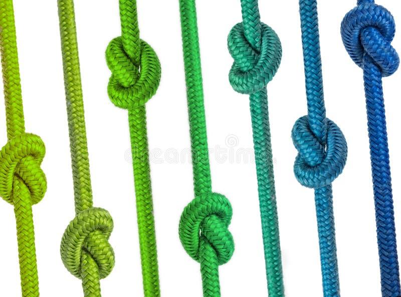 小组与结的绳索连续 库存图片