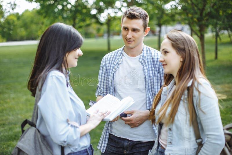 小组公园的学生 免版税库存照片