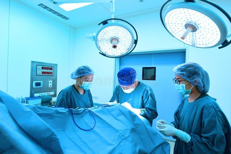 小组兽医手术运转中室 免版税图库摄影
