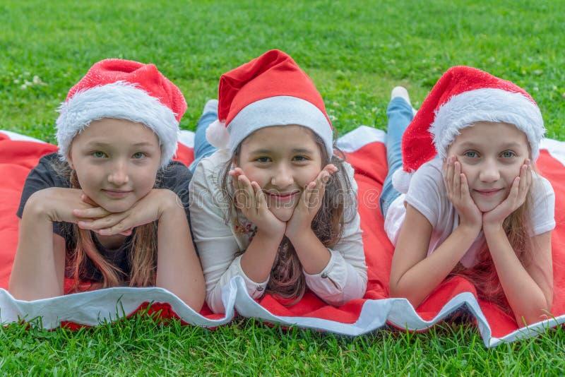 小组圣诞老人项目帽子的愉快的孩子在绿草和微笑的公园在 一个新年,圣诞节的概念 库存照片