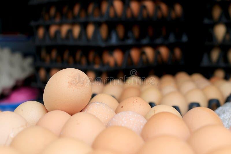 小组在蛋黑色盘区包裹的新鲜的鸡蛋从包裹的一个养鸡场保留为烹调卖在市场上 库存照片