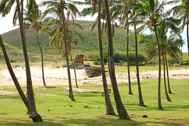 小组在Ahu纳乌纳乌,在Anakena海滩的礼仪平台附近的旅客与在前景,智利的许多可可椰子树 免版税库存照片