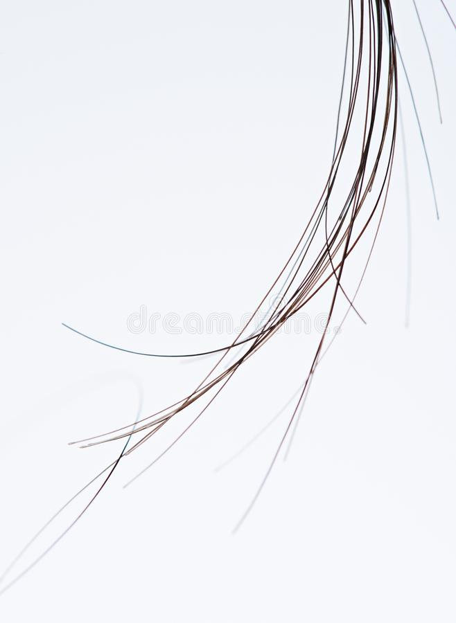 小组头发子线宏指令  免版税库存图片