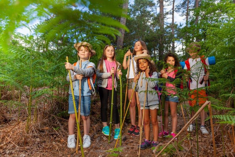 小组孩子在休息在远足期间的森林里站立 库存照片