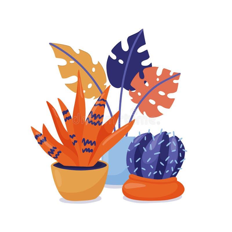 小组室内植物-盆的monstera和仙人掌 库存例证