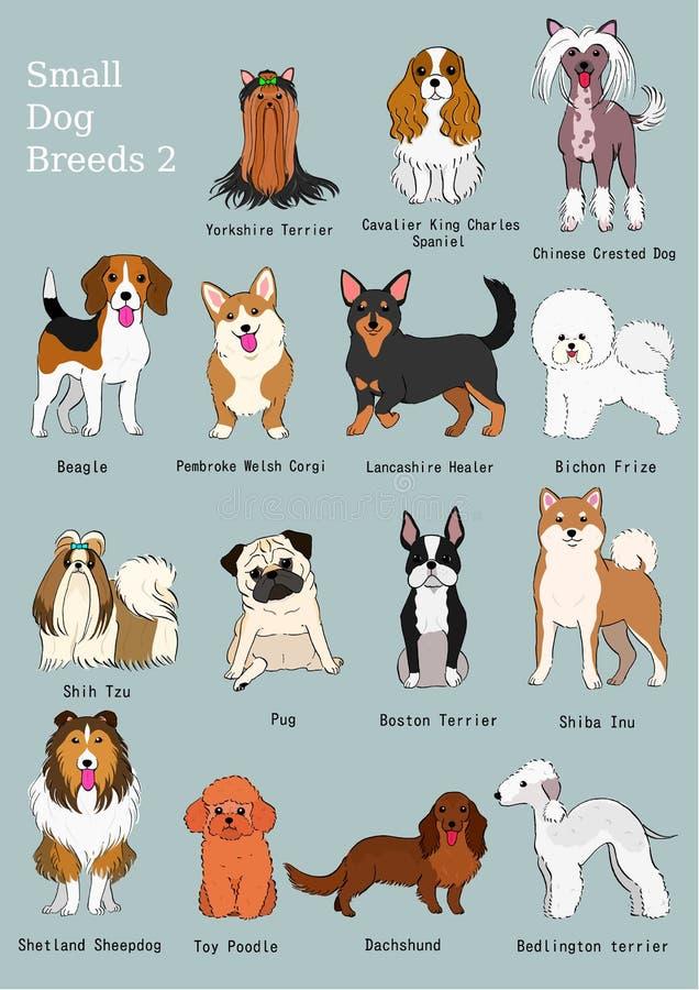 小组小狗品种手拉的图 库存例证