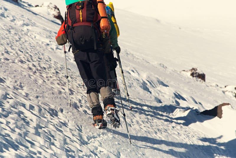 小组山的徒步旅行者 有背包和起重吊钩的登山人在足迹 库存图片