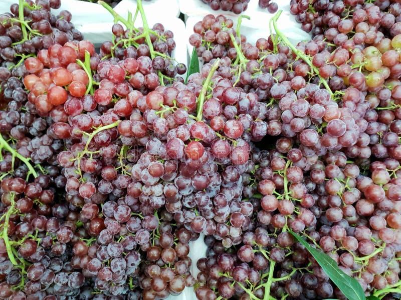 小组新鲜的成熟红葡萄顶视图被隔绝的 免版税图库摄影
