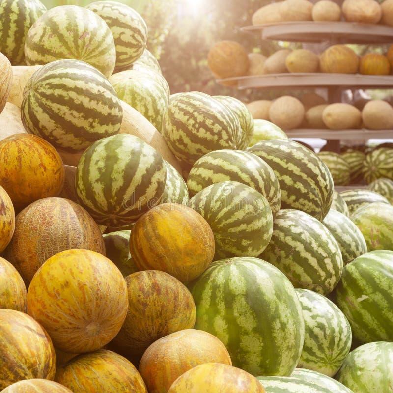 小组新鲜的成熟绿色西瓜和黄色甜瓜 库存图片
