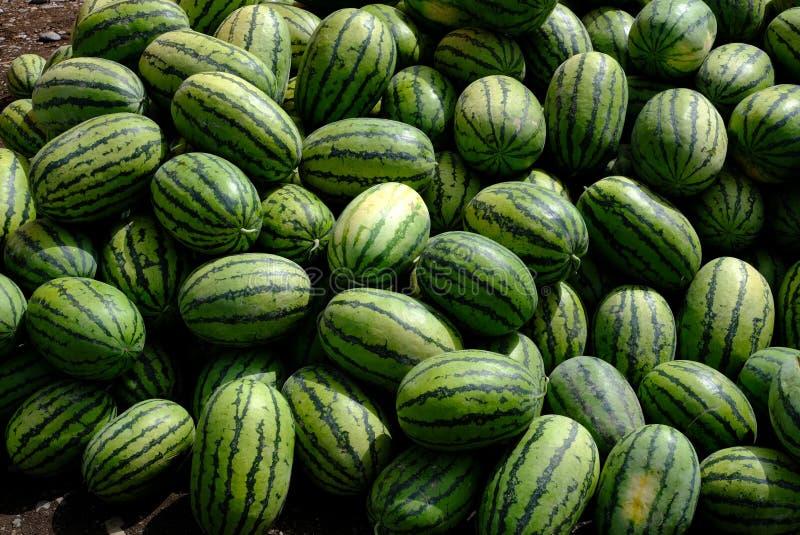 小组新鲜的西瓜结果实在传统新鲜市场上在新疆,中国 图库摄影